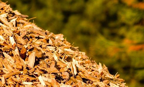 Life Cycle Assessment per il settore biomasse